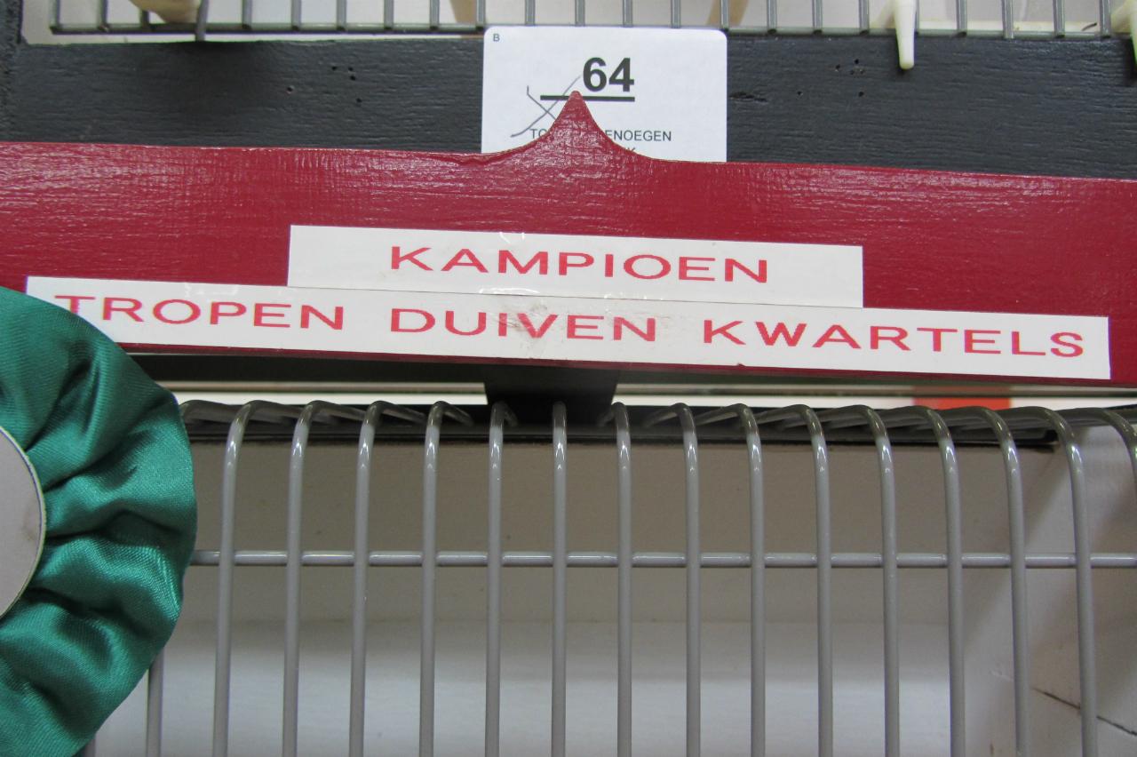 fotos-vogelshow-2012-077