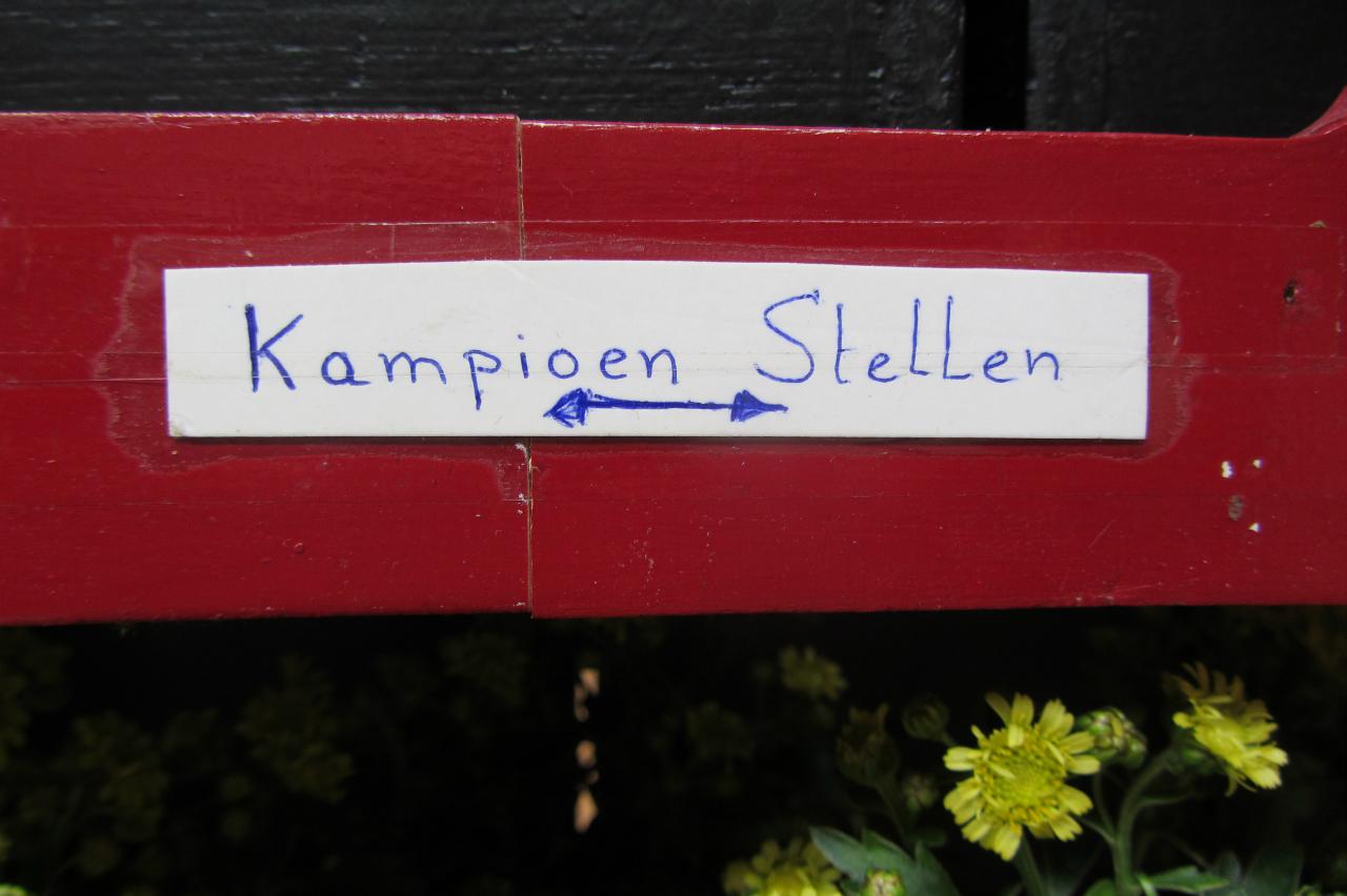 fotos-vogelshow-2012-083